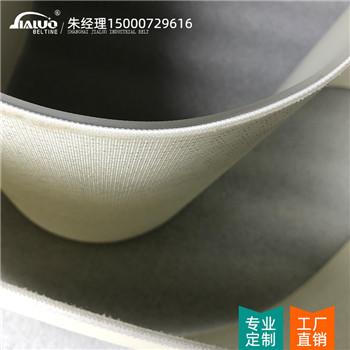 上海食品级输送带厂家